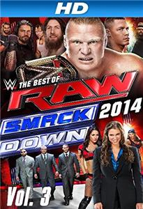 WWE: The Best of RAW and Smackdown 2014: Volume 3 (2015) Online