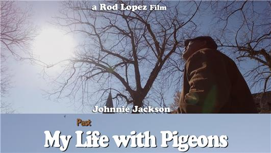 My Past Life with Pigeons (2016) Online