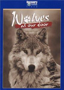 Wolves at Our Door (1997) Online