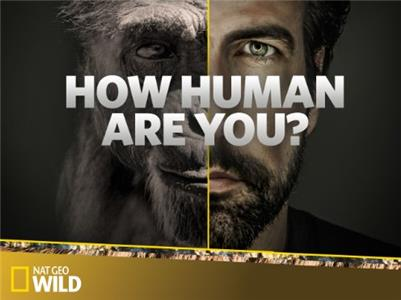 How Human Are You?  Online