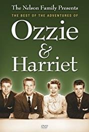 The Adventures of Ozzie and Harriet Hidden Panel (1952–1966) Online