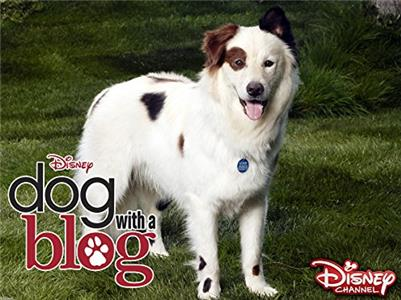 Dog with a Blog Stan Rescues His Princess (2012–2015) Online