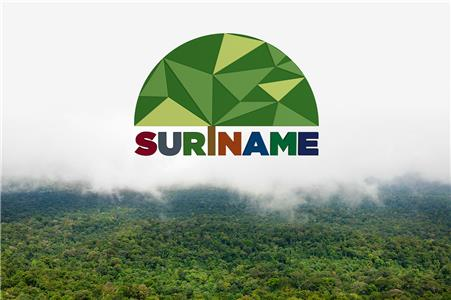Suriname: Designer Collaboration Project (2014) Online