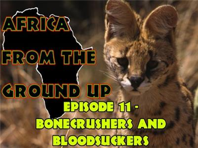 Africa from the Ground Up Bone-crushers and Bloodsuckers (1999– ) Online