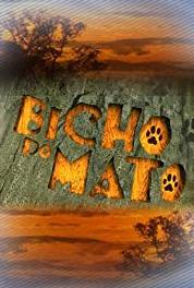 Bicho do Mato Episode dated 9 January 2007 (2006–2007) Online