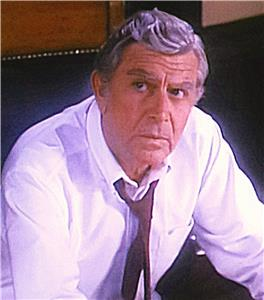 Matlock Diary of a Perfect Murder (1986–1995) Online