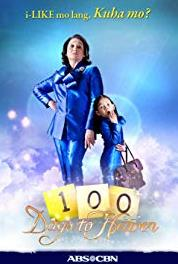 100 Days to Heaven A Happy Ending for Paul and Gina Will Bring Anna Closer to Heaven (2011) Online