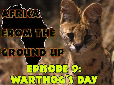 Africa from the Ground Up Warthog's Day (1999– ) Online
