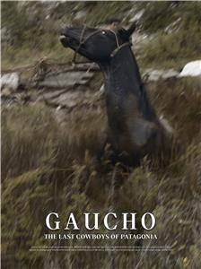 Gaucho: The Last Cowboys of Patagonia (2017) Online