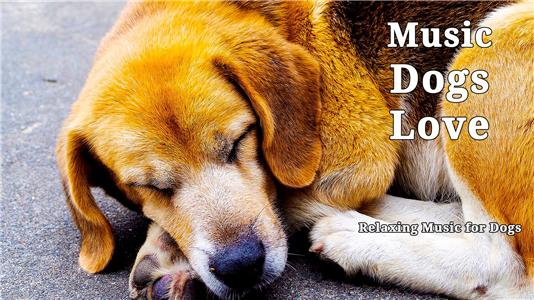 Music Dogs Love: Relaxing Music for Dogs (2017) Online