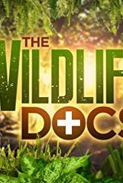 The Wildlife Docs All in the Sloth Family (2013– ) Online
