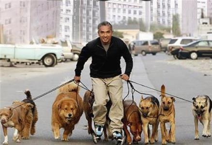 Untitled Cesar Millan Project  Online