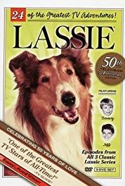 Lassie A Chance to Live (1954–1974) Online